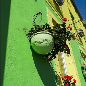 Façade maison verte pot de fleur Bretagne France