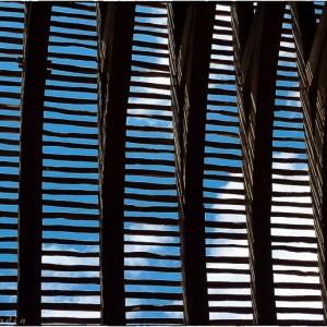 voûte persienne château de Guédelon bois charpente toit