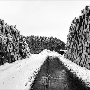 Scierie sous la neige
