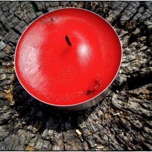 bougie banc bois mousse rouge