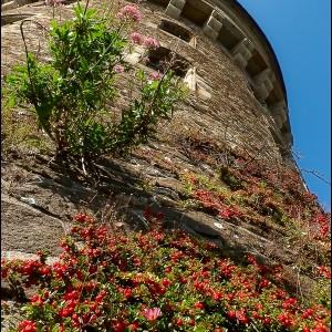 Tour Tanguy Brest Finistère Bretagne vieilles pierres