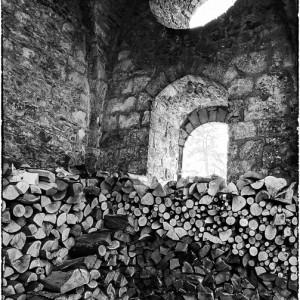 abbaye des vaux de Cernay Yvelines France bois