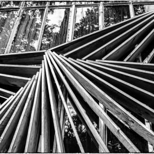 planche bois pavillon du bois de Vincennes exposition universelle 1931 porte dorée Val de Marne France